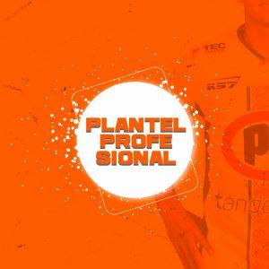 Plantel Profesional